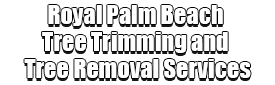 Royal Palm Beach Tree Trimming and Tree Removal Services